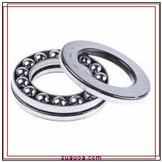 INA EW1 Ball Thrust Bearings & Washers
